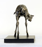 The Foal Cold Cast Bronze Equestrian Sculpture / Trophy / Gift