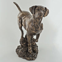 Labrador Gun Dog Cold Cast Bronze Sculpture / Trophy / Gift David Geenty
