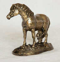 Shetland Pony Cold Cast Bronze Sculpture / Trophy / Gift