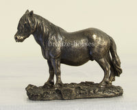 Shetland Pony Small Cold Cast Bronze Sculpture / Trophy / Gift