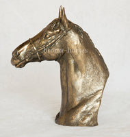 Thoroughbred Bust Cold Cast Bronze Horse Sculpture / Trophy / Gift