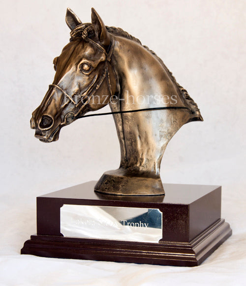 Event Horse Bust Bronze Equestrian Trophy