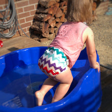Load image into Gallery viewer, Swim Nappy - One Size Fits Most