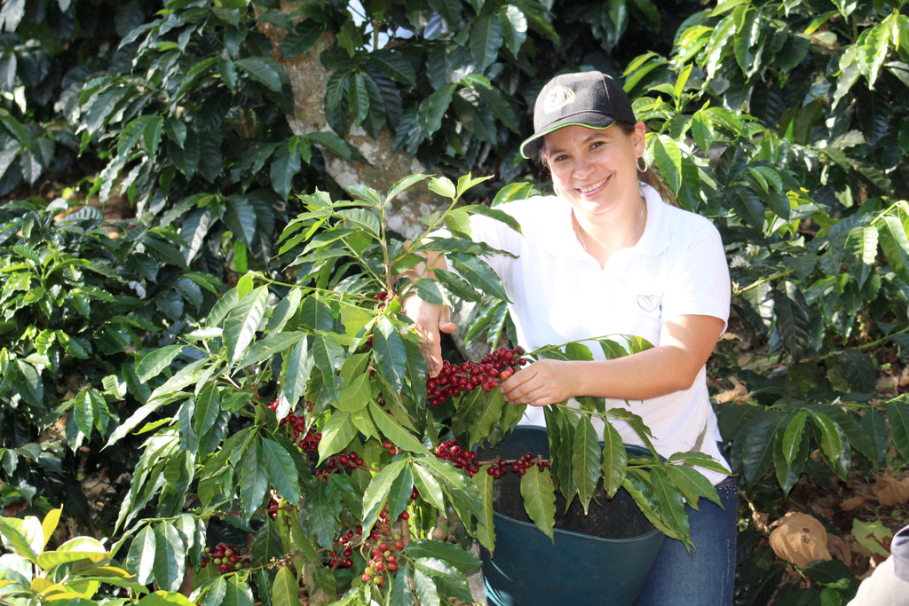 Ana Mildred Munoz posing with a coffee tree
