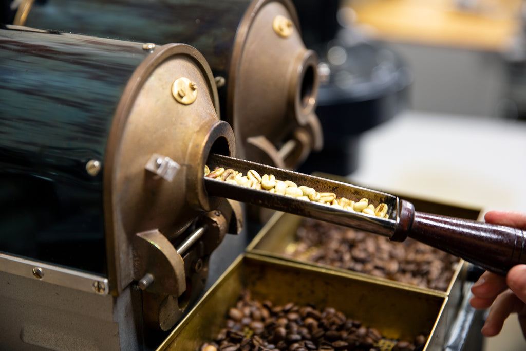 Sample Roasting Green Coffee with Roasted Coffee Below
