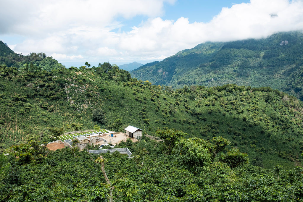 Coffee processing mill in the mountains of Huehuetenango, Guatemala