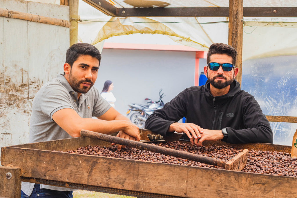 Vicente Mejia and Ricardo Pereira at a coffee drying table