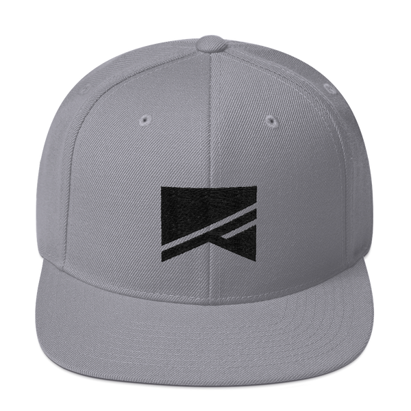 Snapback Hat - 19 Colors! - No Barriers Hats - Silver