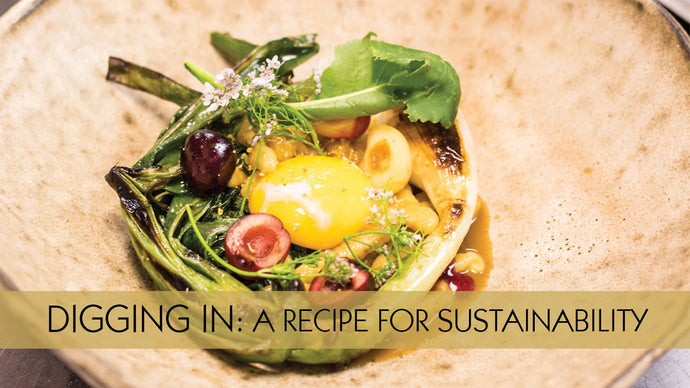 Digging In: A Recipe for Sustainability