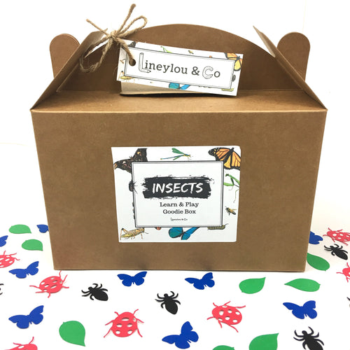 Insect Learn & Play Goodie Box