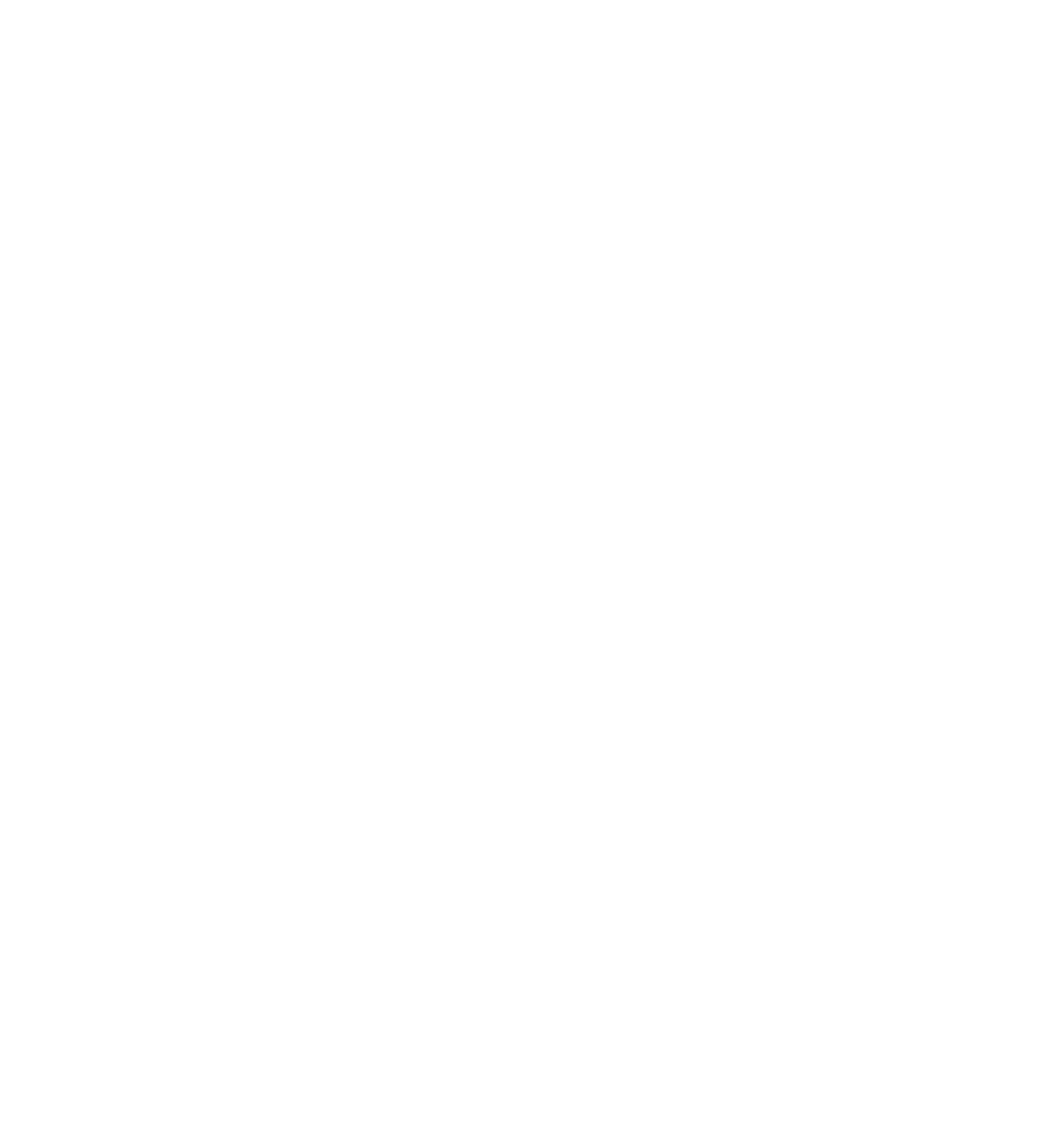 THE GURU OF ABS
