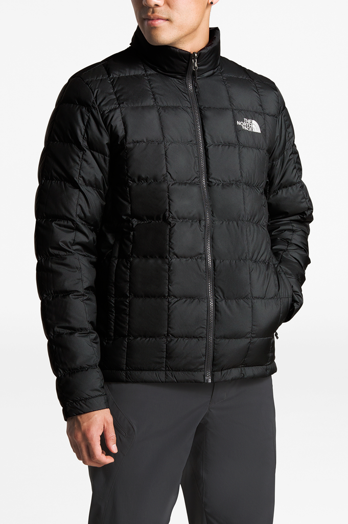 North Face Mens Altier Tri Goose Down Jacket