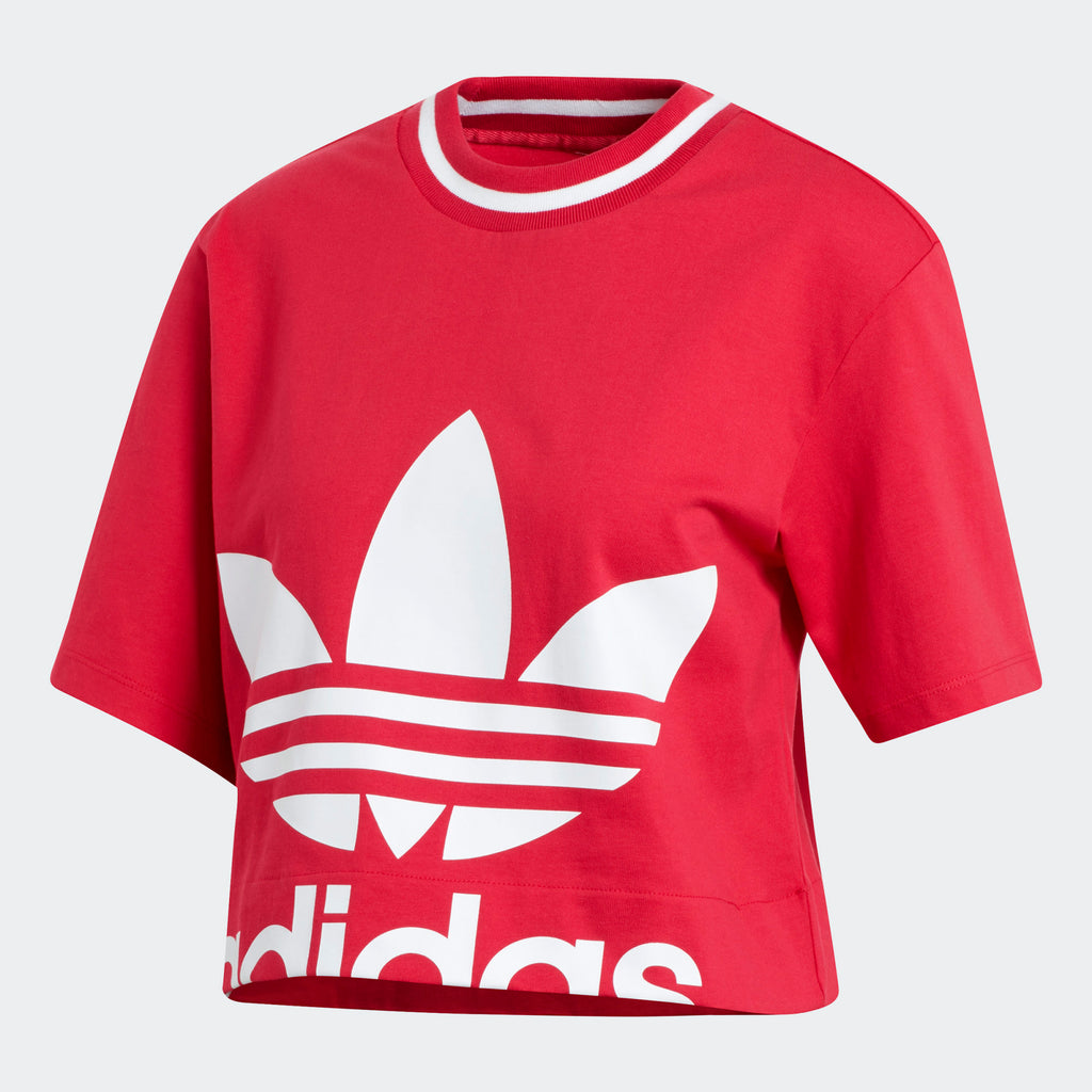 Women's adidas Originals Cropped Tee Energy Pink