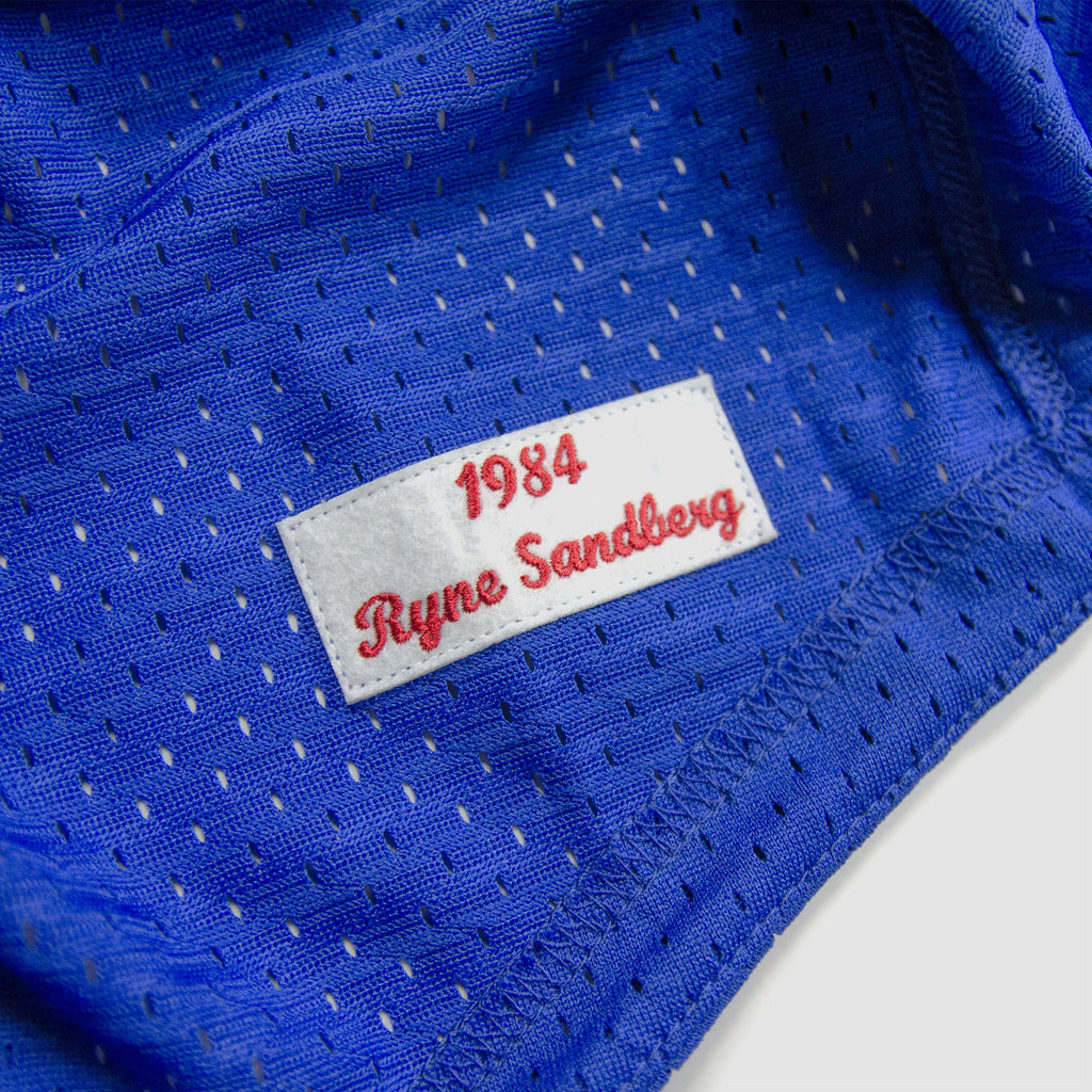 Men's Mitchell & Ness Chicago Cubs Ryne Sandberg 1984 Batting Practice Jersey