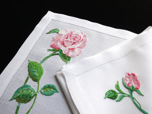 Roses Vintage French Beauvais Embroidery Placemat Set - Setting for 8