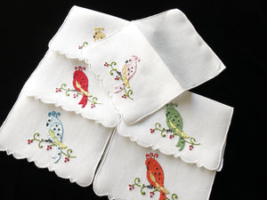 Colorful Cockatoos Vintage Madeira Embroidery Cocktail Napkins - Set of 6