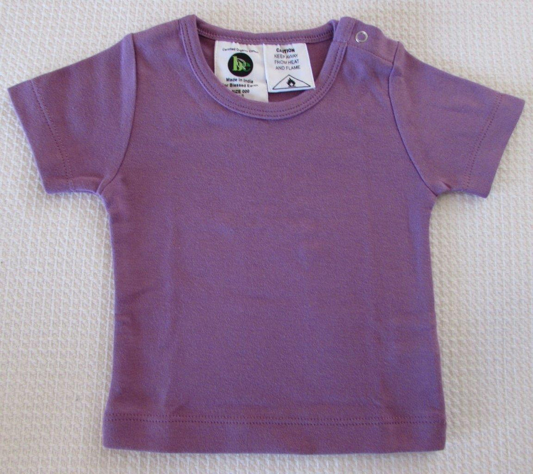 Baby Short Sleeve Crews - Cosy
