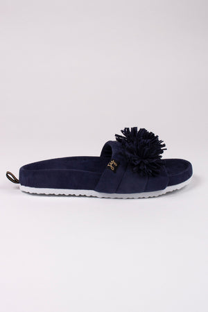 Albany in Navy