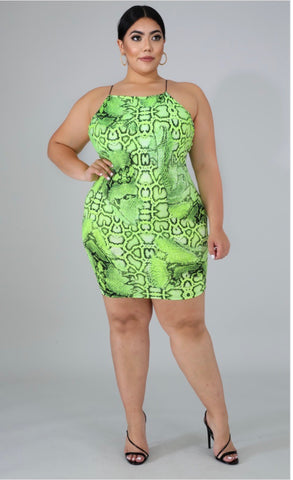 Wild Thoughts Dress
