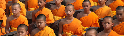 Meditating Monks With Saffron Coloured Robes