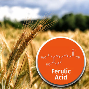 Age-Defying Vitamin C & E Boost with Ferulic Acid
