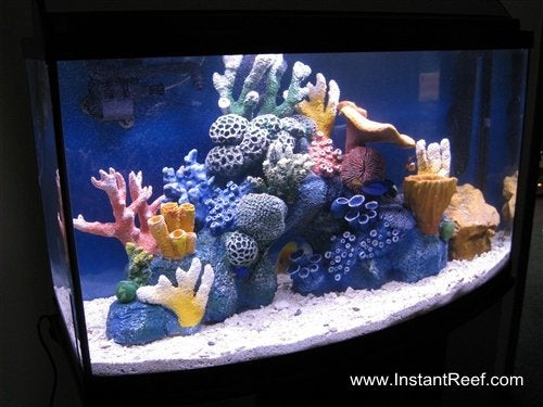 How to set up a saltwater fish aquarium with artificial corals