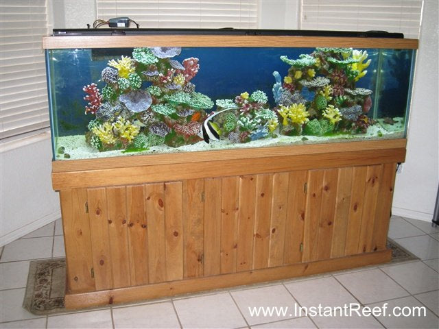 120 Gallon Saltwater Fish Only Aquarium Upgrade with Artificial Corals