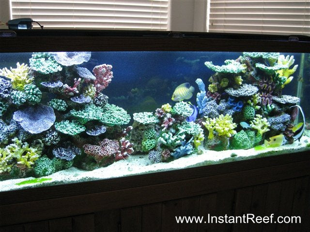 120 Gallon Saltwater Fish Aquarium with Artificial Corals
