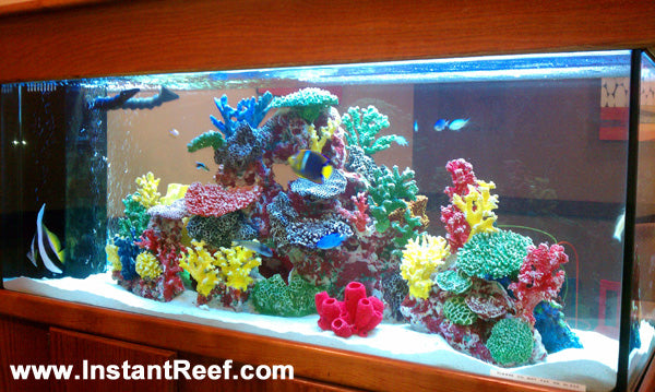 90 Gallon Marine Fish Tank Design Upgrade with Fake Corals