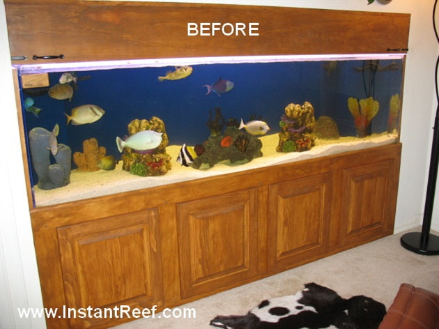 Upgrade 8-Foot Artificial Coral Reef Tank with Salt Water Fish