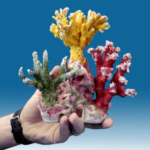 AC008 Artificial Coral
