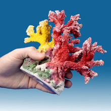 Load image into Gallery viewer, AC010 Artificial Coral