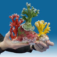 Load image into Gallery viewer, DM053 Fake Coral