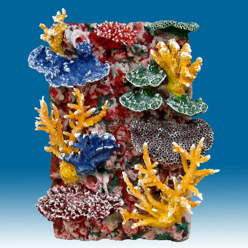 DM059C 3D Fish Aquarium Background for Saltwater Tanks