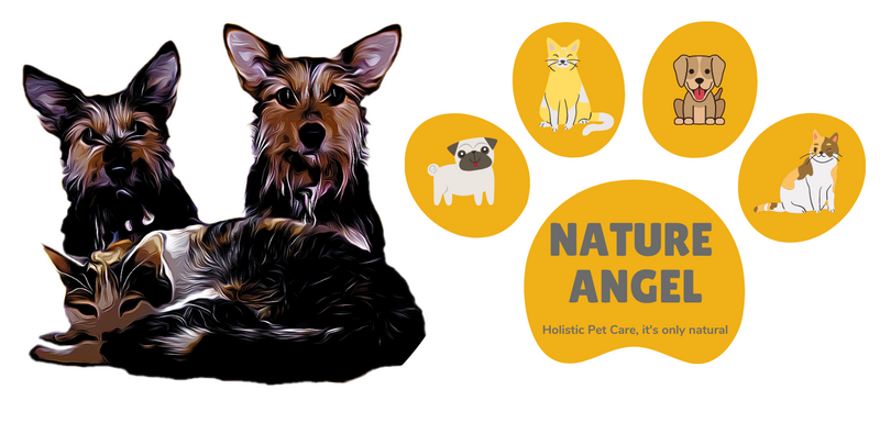 NHV Natural Pet Products. 100% Natural Holistic Pet Remedies.