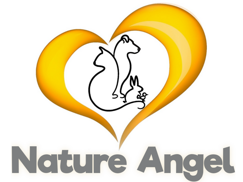 Nature Angel