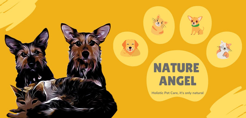 NHV Natural Pet Products - 100% Natural Holistic Remedies For Cats & Dogs