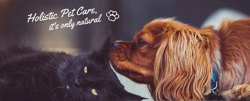 NHV Natural Pet Products. Holistic pet supplements from UK.