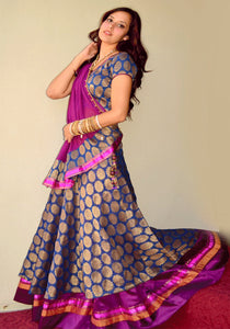 Rajhani Enchantress - Gopi Skirt Lehenga