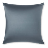Pillow & Cover / Dark Slate Grey