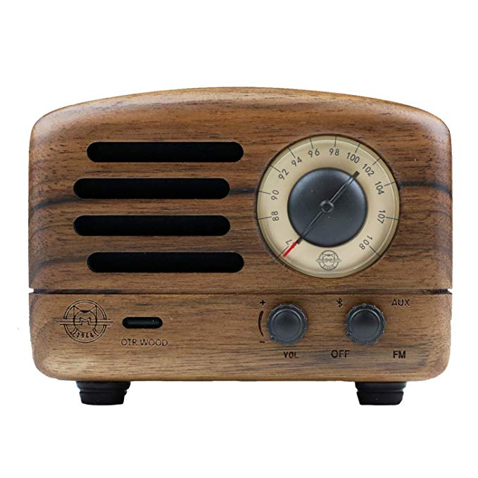 Muzen Mini Retro portable FM Radio with Bluetooth speaker