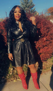 The Ish Faux Leather Dress