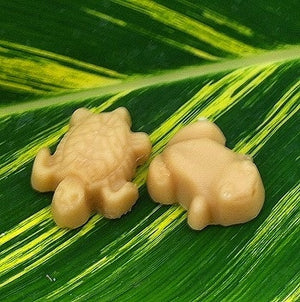 We love frogs! Especially pure maple candy frogs.