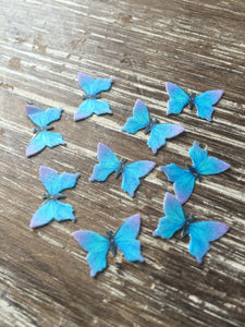 Mini Edible Butterflies