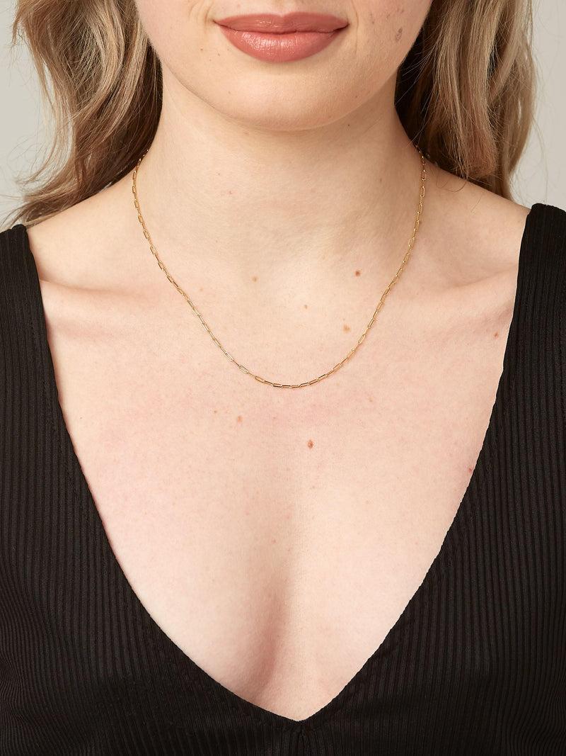 Light Chain - Solid 14k Gold - Stephanie Grace Jewellery