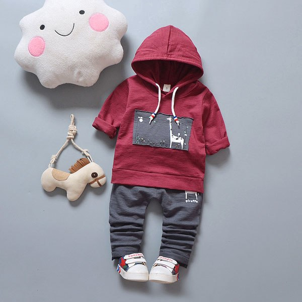 Baby Boys Hoodie And Cotton Bottoms Set