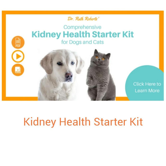 he Kidney Health Starter Kit was created to give you the knowledge you need to understand what Kidney failure means for you pet,