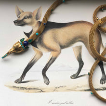 Bejeweled Canid Belt