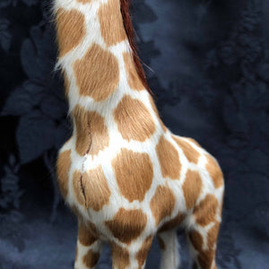 Graceful Fur Giraffe
