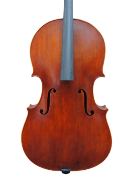 Cello - Edgar Russ, Copy of Domenico Montagnana